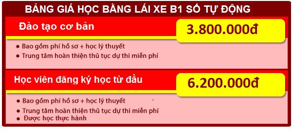 bảng giá học lái xe ô tô b1 tại sao bắc việt